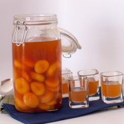 Homemade Apricot Brandy Shots