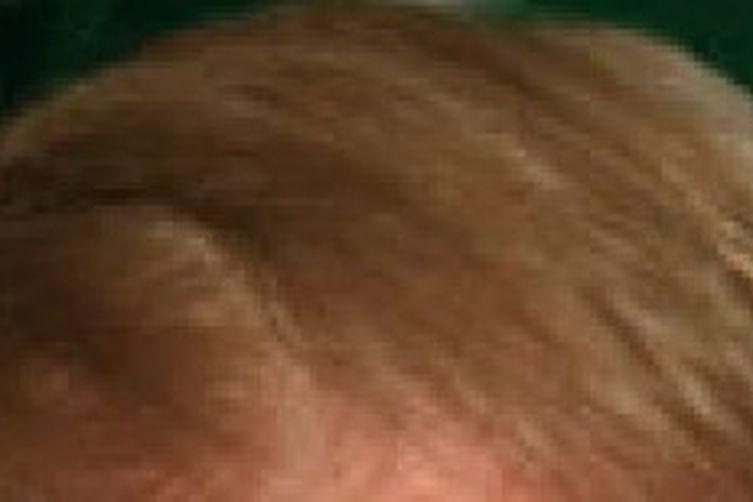 Trumpafella Skank (The Donald on the half shell)