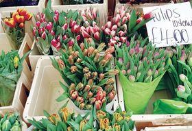 D0e9538e 898b 4413 b369 2cefbf9a0d91  market flowertulips