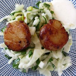 Fennel and Scallop Salad with Garlic Creme