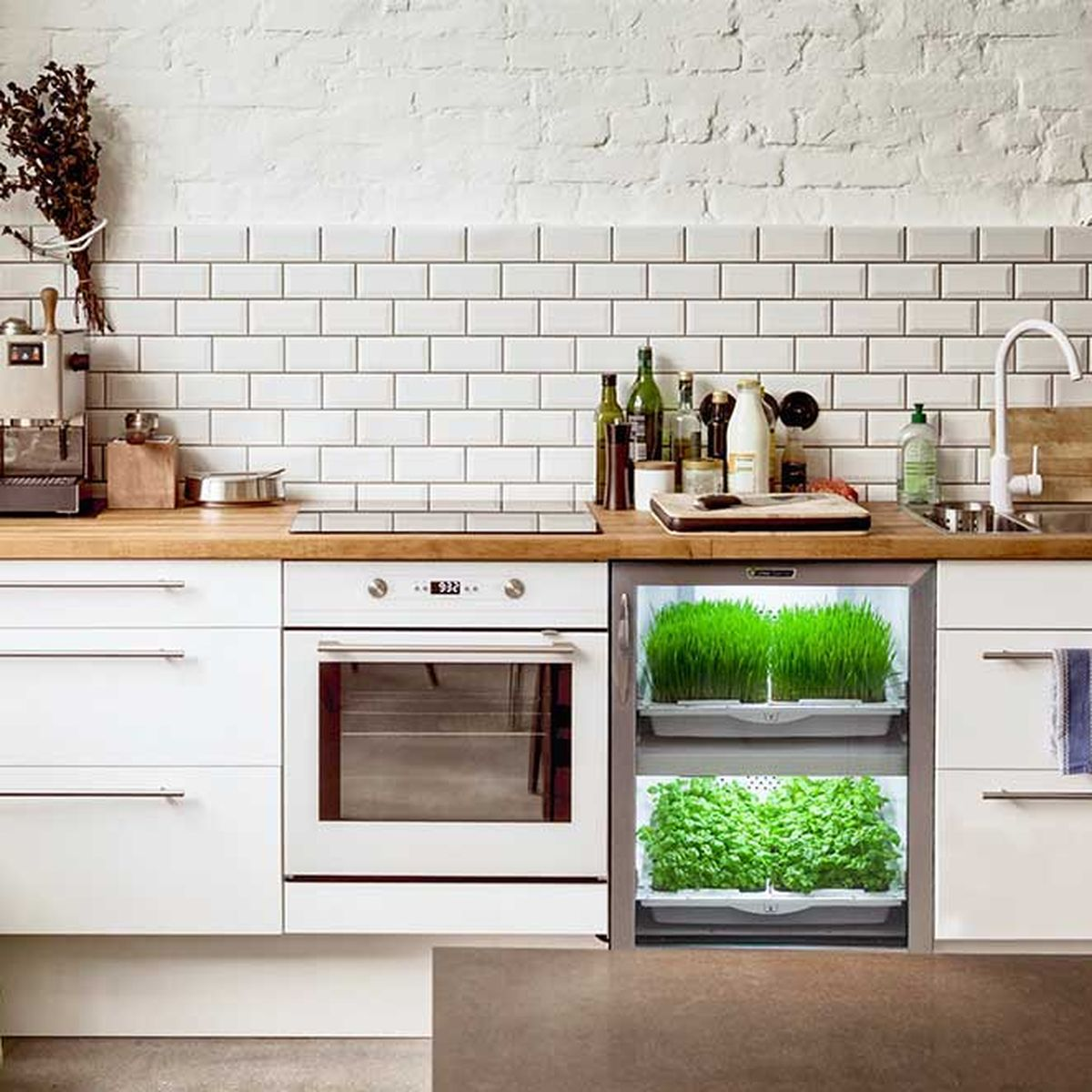 5 Indoor Gardening Technologies That Are Making it Easier to Grow ...