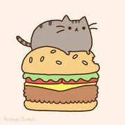 551d80b4 bc7f 4726 be21 00dbb1ed6b25  pusheen eating