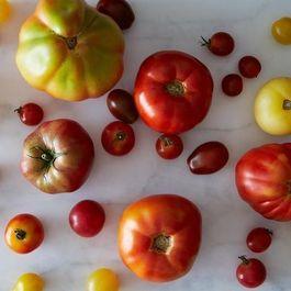 7f3c47e0 d3e5 41e1 9ca1 d24cb58b31ca  2013 0730 contest theme tomatoes 006