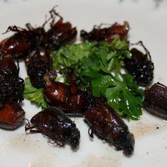 Sauteed June Bugs