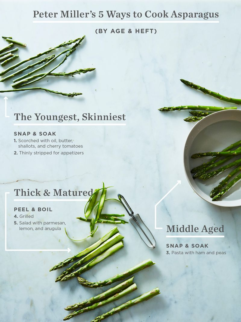 1cd7efe1 df9b 4b0f 8f0f cb349a5674e4  Asparagus Graphic No Logo A Guide to Cooking Every Asparagus, From the Straggly to the Chunky