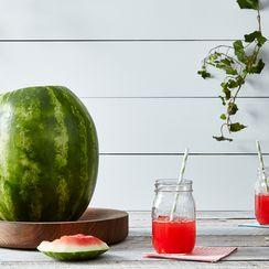The Wondrous Way Alton Brown Juices a Watermelon