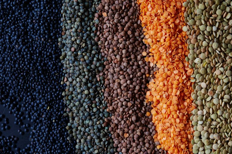 From left to right: Black/beluga lentils, French/Le Puy lentils, brown lentils, red lentils, and green lentils.