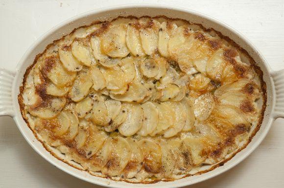 7529d19d 416a 474c 8fbc b9cba439791f  potato