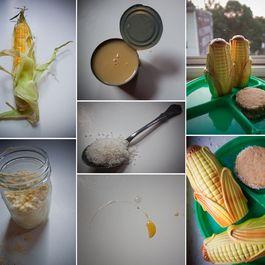 41901eaf 34df 4c18 8e70 e5bd23b3bc15  corn collage