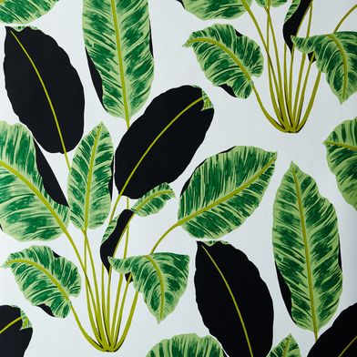 Self-Adhesive Wallpaper, Hojas Cubanas