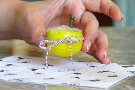 Lavender, Lemon & Rosemary Granita