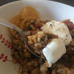 Mujaddara: Lebanese style Lentils and Rice