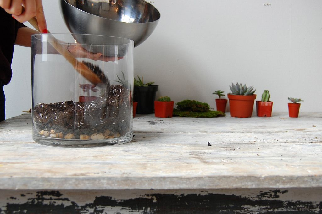 DIY Terrarium, shape the terrain