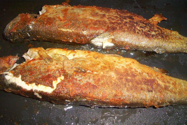 Ogulin's trout (Ogulinska pastrva)