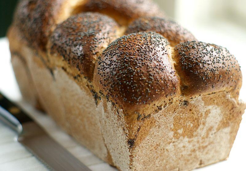 Farmhouse Whole Wheat Bread