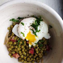 peas, pancetta +  poached egg