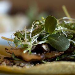 Grilled Mushroom & Bok Choy with Asian Cilantro Pesto