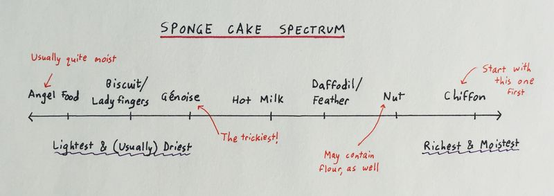 The Wide World of Sponge Cakes