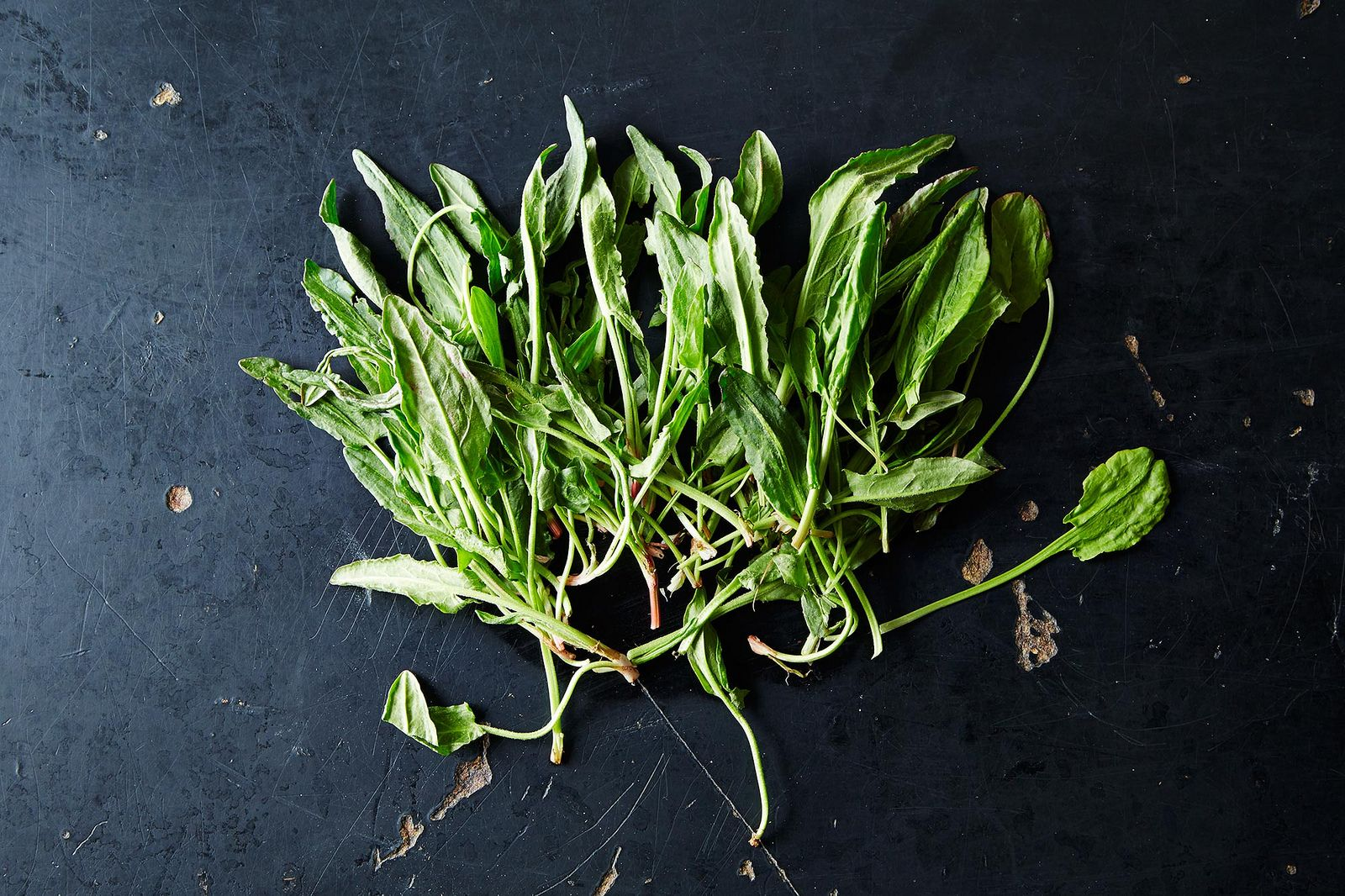 Sorrel and How to Use It, from Food52