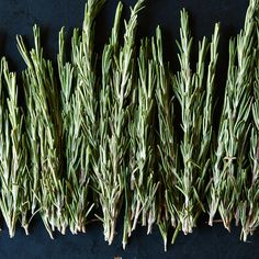 Fresh Rosemary and How to Use It at Every Meal