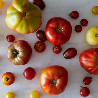 How to Keep Tomatoes Fresh for Longer