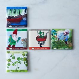 Heirloom Seed Art Packets, Herbs (Set of 5)
