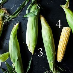 The Essential Grilling Technique the Food52 Team Still Can't Agree On