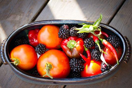 Summer's End Tomato Blackberry Salsa