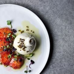 BURRATA WITH BLOOD ORANGE & LAVENDER OIL