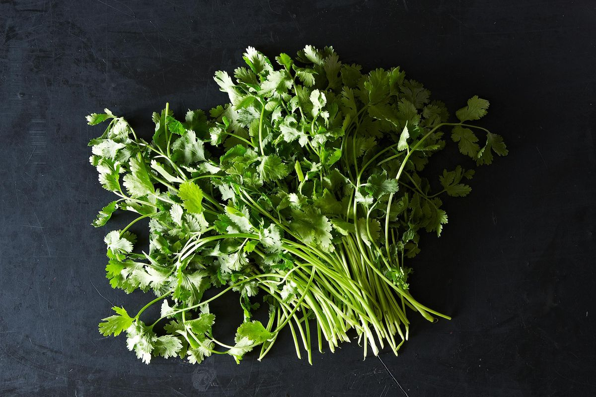 The Video Of A Man Chopping Cilantro We Can T Stop Watching