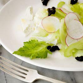 Community Picks -- Celery