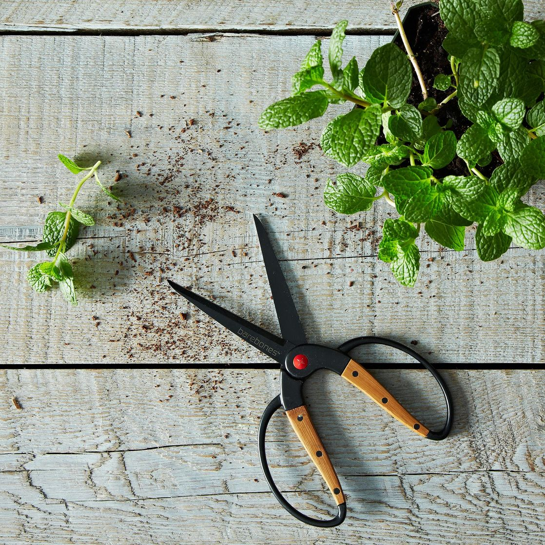 Garden Scissors on Food52
