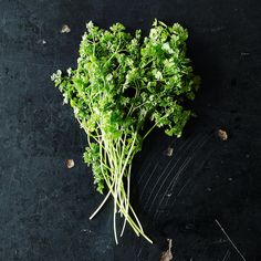 Over 30 Recipes to Put Herb Stems to Good Use
