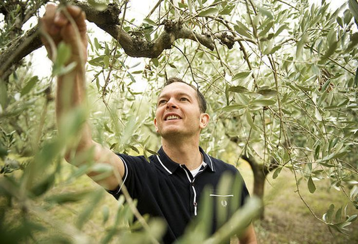 Pressing Olives with Jason Gibb of Nudo Olive Oil