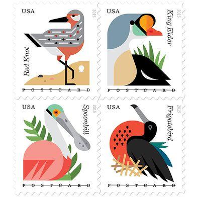 Coastal Bird Stamps