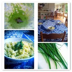 Fusilli with chive sauce
