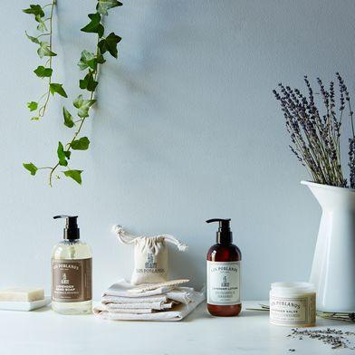 Lavender Salve, Lotion, Soap & Sachet Set