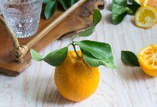 Earl Grey and orange iced tea