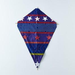 Silkscreened and Bamboo American Kite