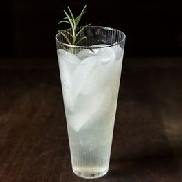 4a2637c4-c52f-4361-998f-f01a6569de13.rosemary_gin_cocktail