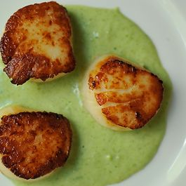 Anything Scallops