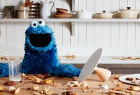 7ecd375d 24a1 4a6e a8d8 08ea7439e42e  2015 1209 cookie monster mess sq james ransom 162