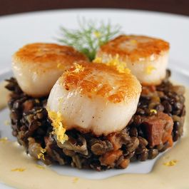 Sea Scallops with Puy Lentils and Fennel Cream
