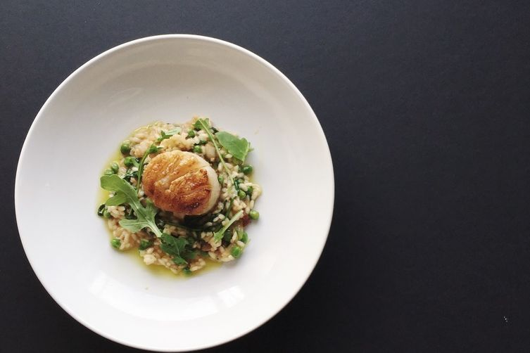 White Miso & Arugula Risotto with Seared Scallop