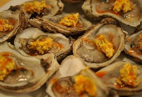 Your Best Oysters