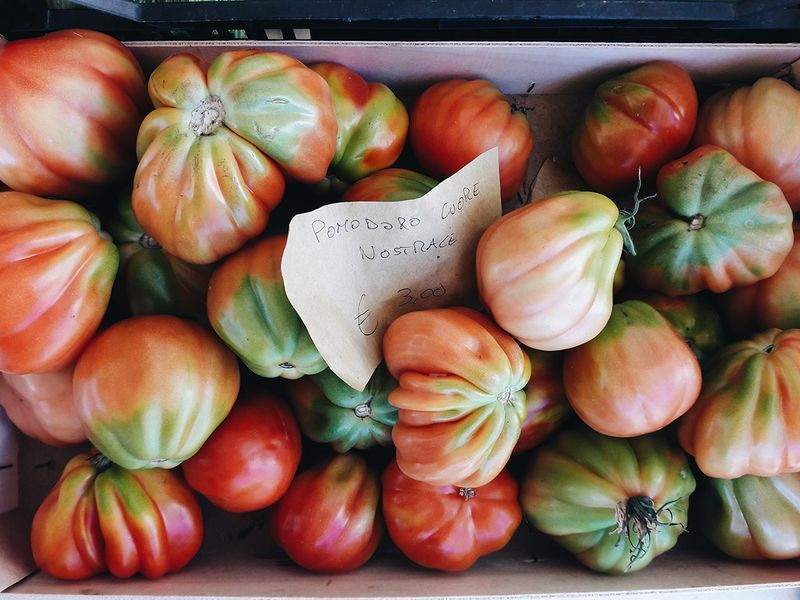 Local Tuscan tomatoes.