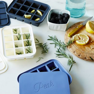 Everyday Ice Tray with Lid