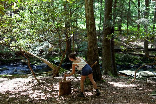 Beaver Brook's Big Feast: A Weekend in the Woods