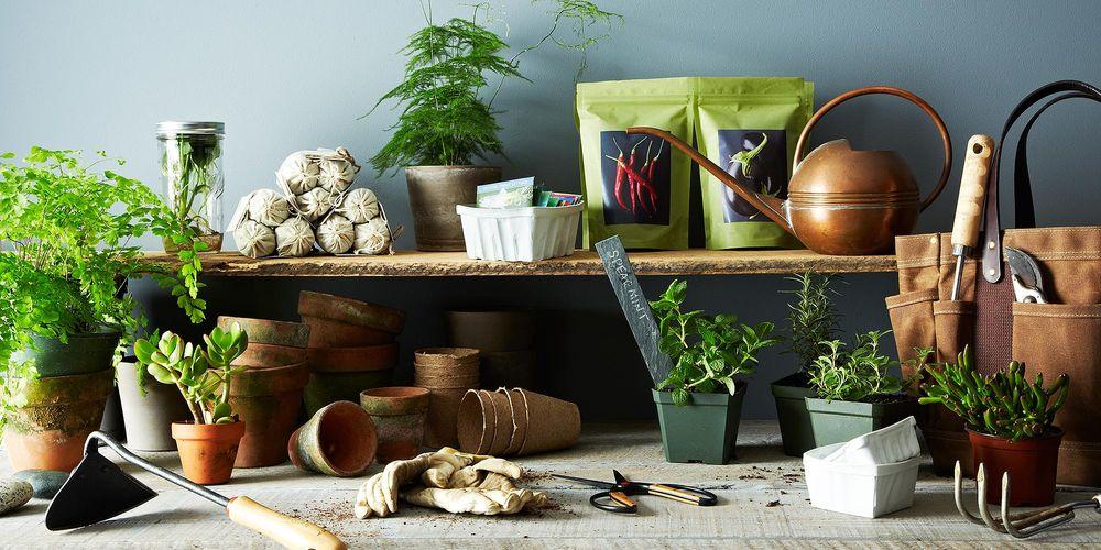 Get Your Garden Going