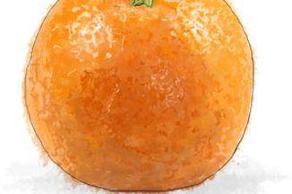 C5c7c196 042d 47d5 9b31 4625d5aca3e2  orangeweb